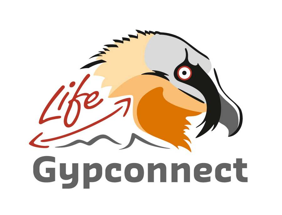 Gypconnect