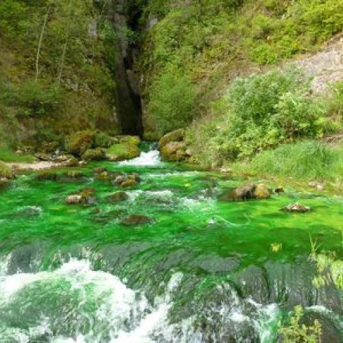 La résurgence de Castelbouc colorée de vert. Crédit : Yannick Manche - PnC