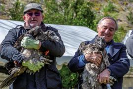 Henri Couderc, président du PNC, et Allain Bougrain Dubourg, président de la LPO - Lâcher de gypaètes barbus dans le Parc national, juin 2019. © Olivier Prohin