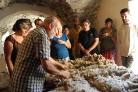Formation au tri de la laine © Mathilde Schlaeflin