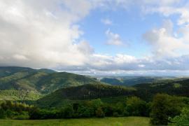 Vue de la forêt domaniale de l'Aigual, Arnaud BOUISSOU / Terra ministère de l'environnement ©