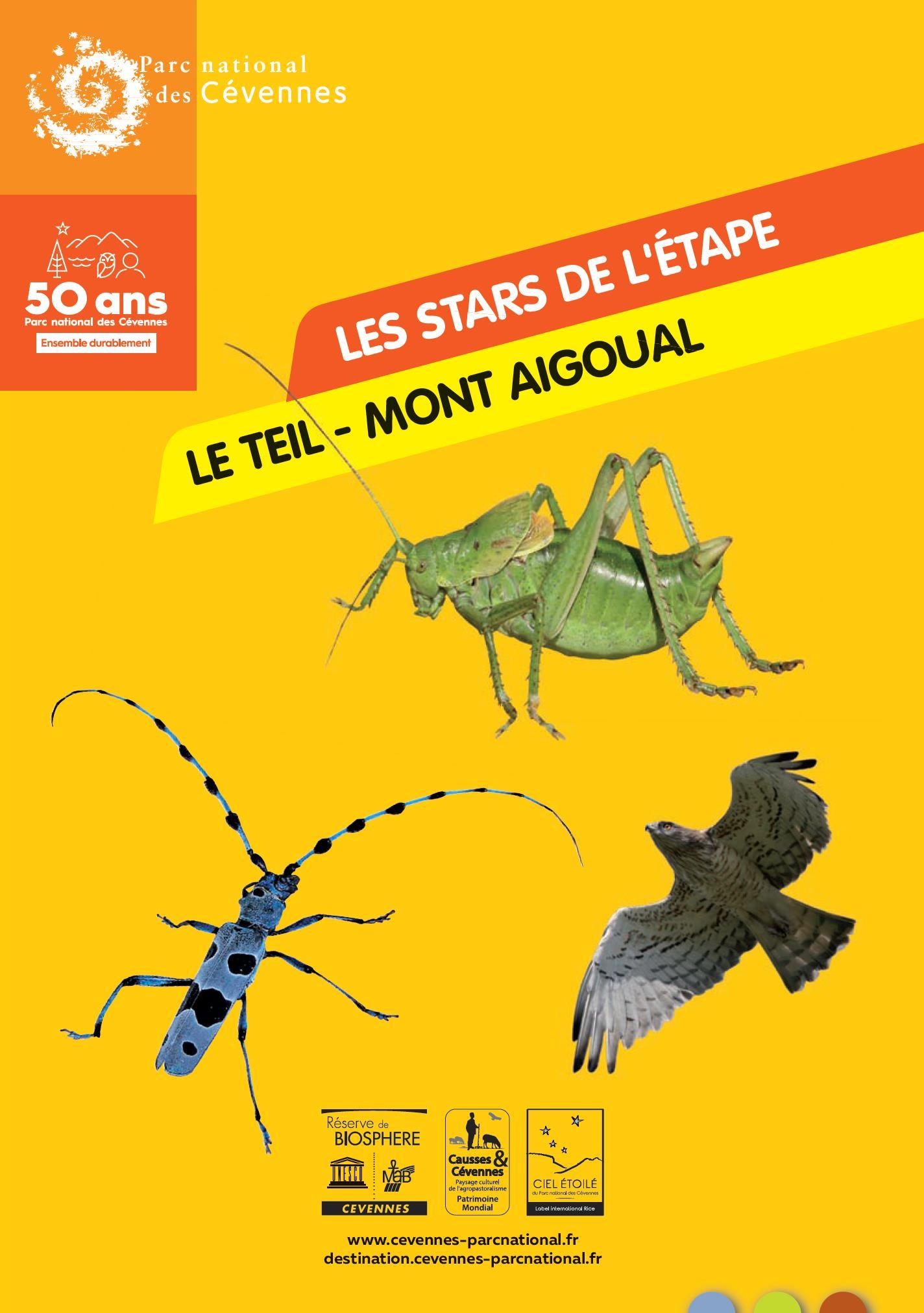 Les stars de l'étape Le Teil - Mont Aigoual